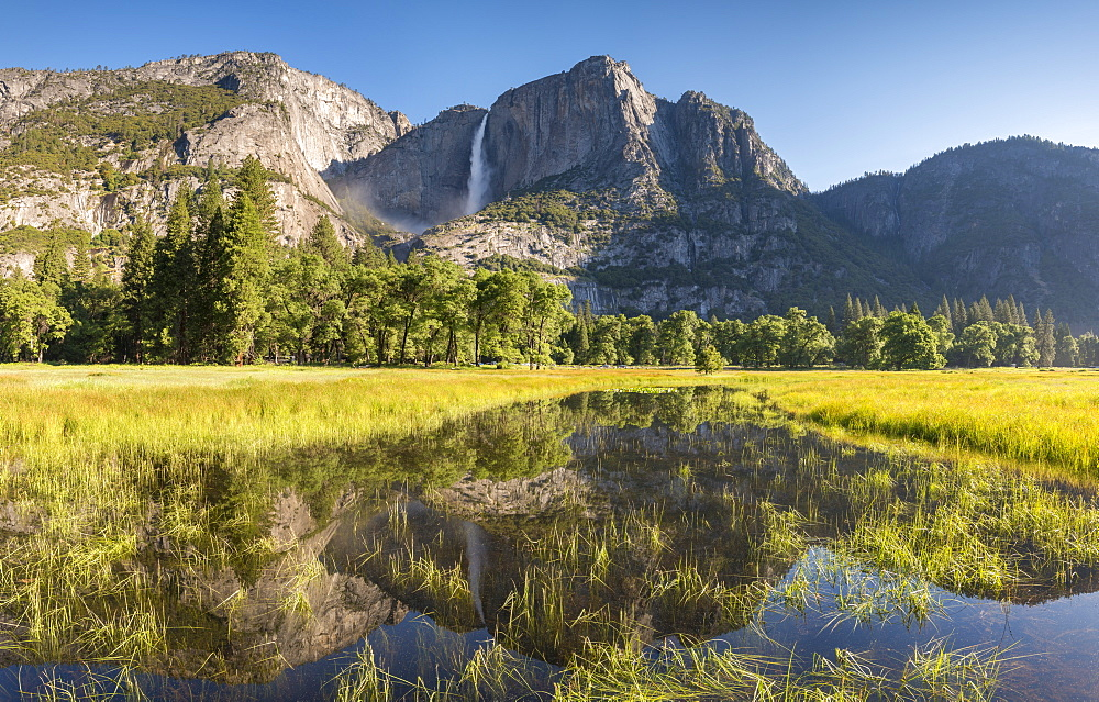 Flooded Cook's Meadow beneath Yosemite Falls, Yosemite Valley, Yosemite National Park, UNESCO World Heritage Site, California, United States of America, North America