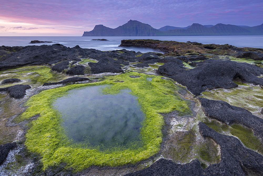 Algae coated rock pools at sunset on the basalt rock ledge seashore of Gjogv in the Faroe Islands, Denmark, Europe