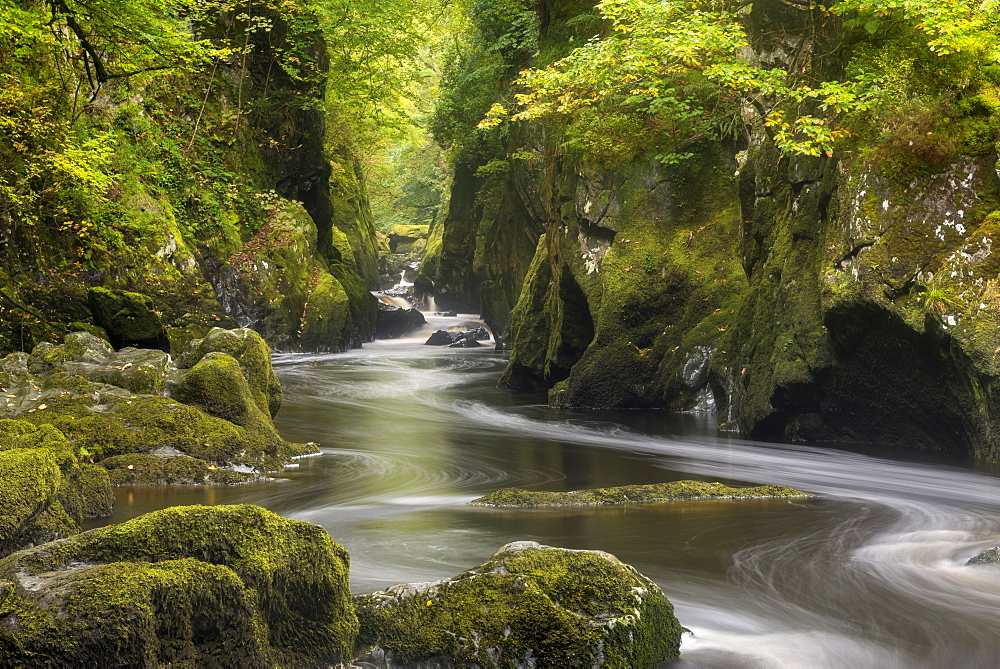 The mystical Fairy Glen near Betws y Coed in Snowdonia National Park, North Wales, United Kingdom, Europe - 799-3653