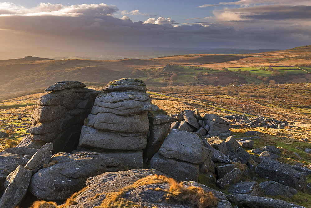 Kings Tor near Merrivale on a sunny winter afternoon, Dartmoor, Devon, England, United Kingdom, Europe - 799-3659