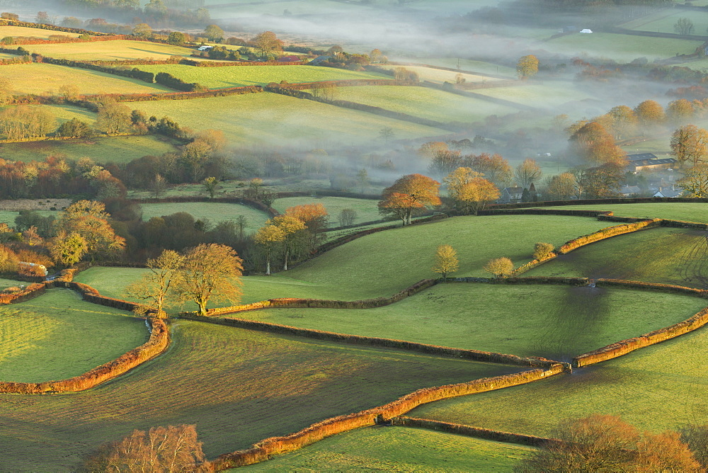 Early morning winter sunshine bathes the rolling farmland of Dartmoor National Park, Devon, England, United Kingdom, Europe