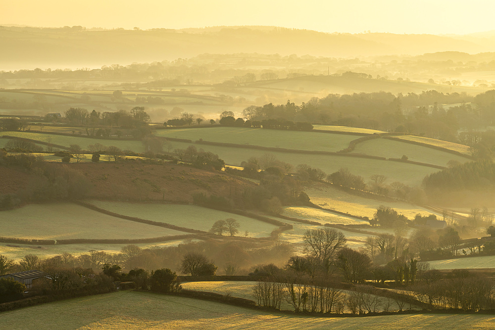Rolling countryside near Moretonhampstead at dawn, Dartmoor National Park, Devon, England. Winter (January) 2019.