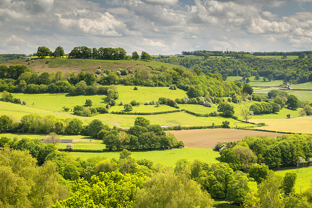 Rolling Cotswolds countryside in spring near Cam Peak, Gloucestershire, England, United Kingdom, Europe