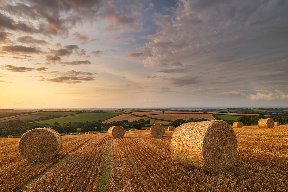 Straw bales at sunset in rural Devon, Livaton, Devon, England, United Kingdom, Europe