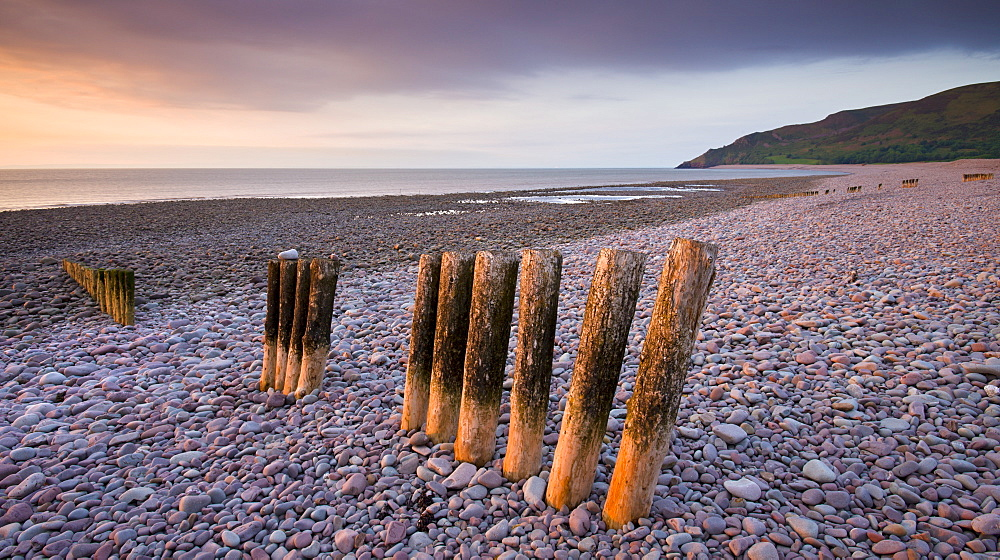 Weathered wooden coastal defenses on Bossington Beach, Exmoor National Park, Somerset, England, United Kingdom, Europe