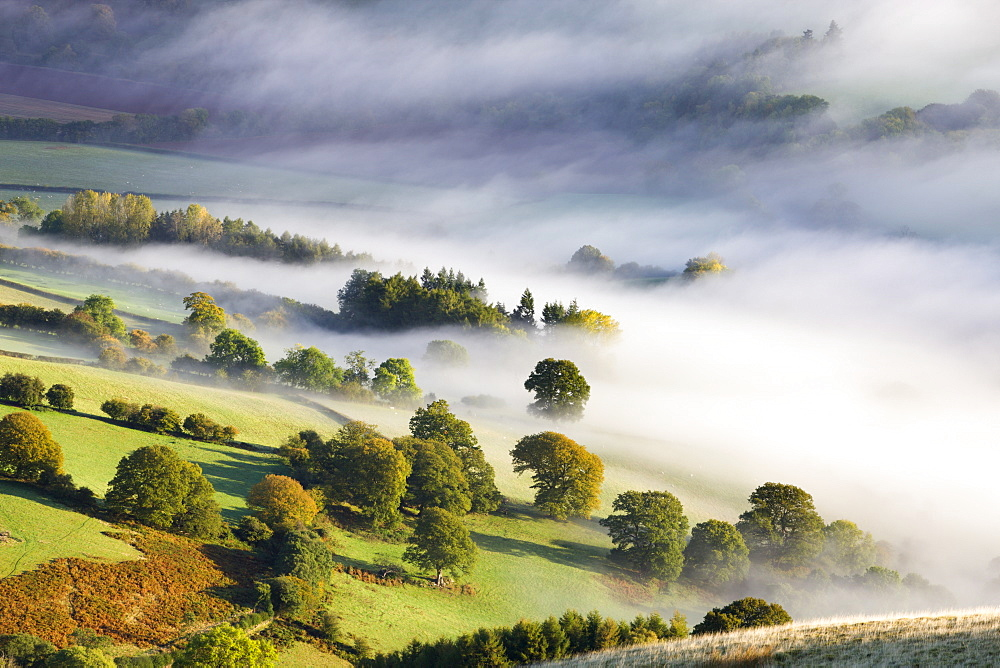 Mist covered rolling countryside in the Usk Valley, Brecon Beacons National Park, Powys, Wales, United Kingdom, Europe - 799-622