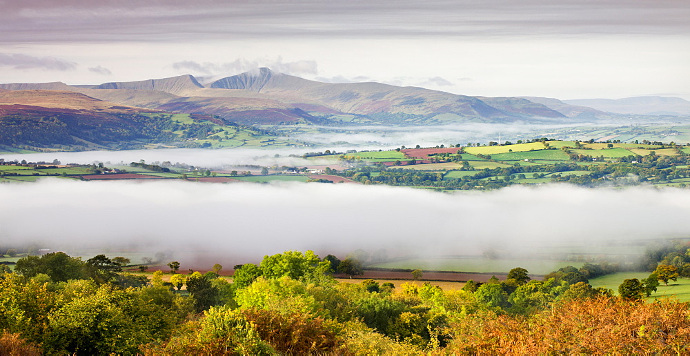 Overlooking mist covered countryside towards Pen y Fan and the Brecon Beacons mountains, Brecon Beacons National Park, Powys, Wales, United Kingdom. Europe - 799-629