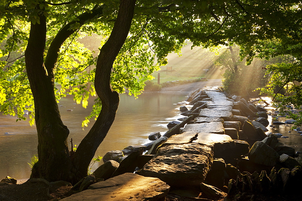 Misty summer morning by Tarr Steps clapper bridge, Exmoor National Park, Somerset, England, United Kingdom, Europe