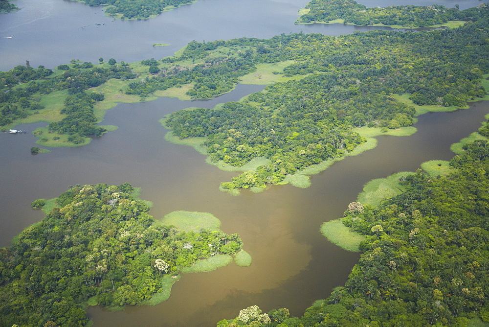 Aerial view of Amazon rainforest and tributary of the Rio Negro, Manaus, Amazonas, Brazil, South America  - 800-1094
