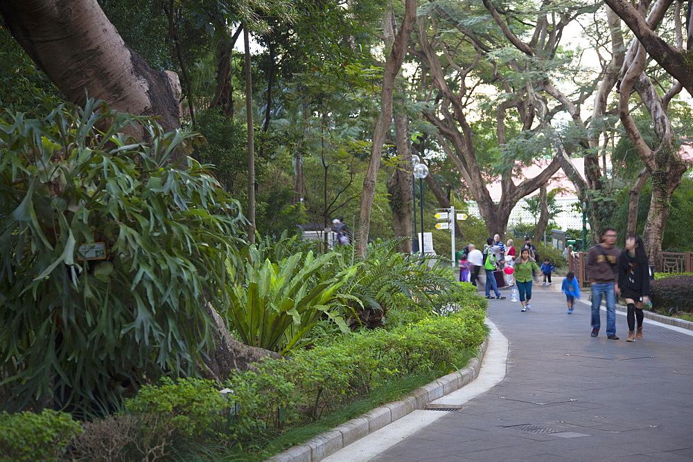 Hong Kong Zoological and Botanical Gardens, Admiralty, Hong Kong Island, Hong Kong, China, Asia