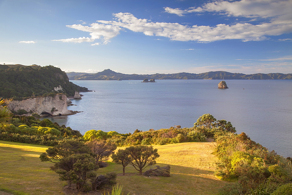 View of Cathedral Cove Marine Reserve (Te Whanganui-A-Hei), Coromandel Peninsula, Waikato, North Island, New Zealand, Pacific