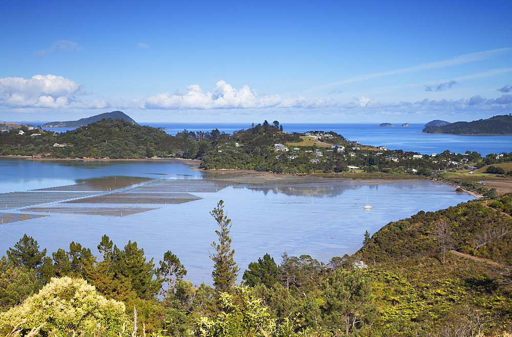View of Coromandel Town harbour, Coromandel Peninsula, Waikato, North Island, New Zealand, Pacific