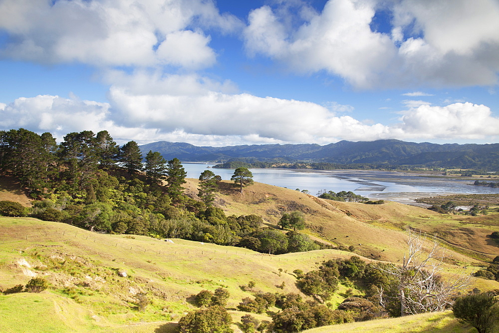 View of Manaia Harbour and farmland, Coromandel Peninsula, Waikato, North Island, New Zealand, Pacific