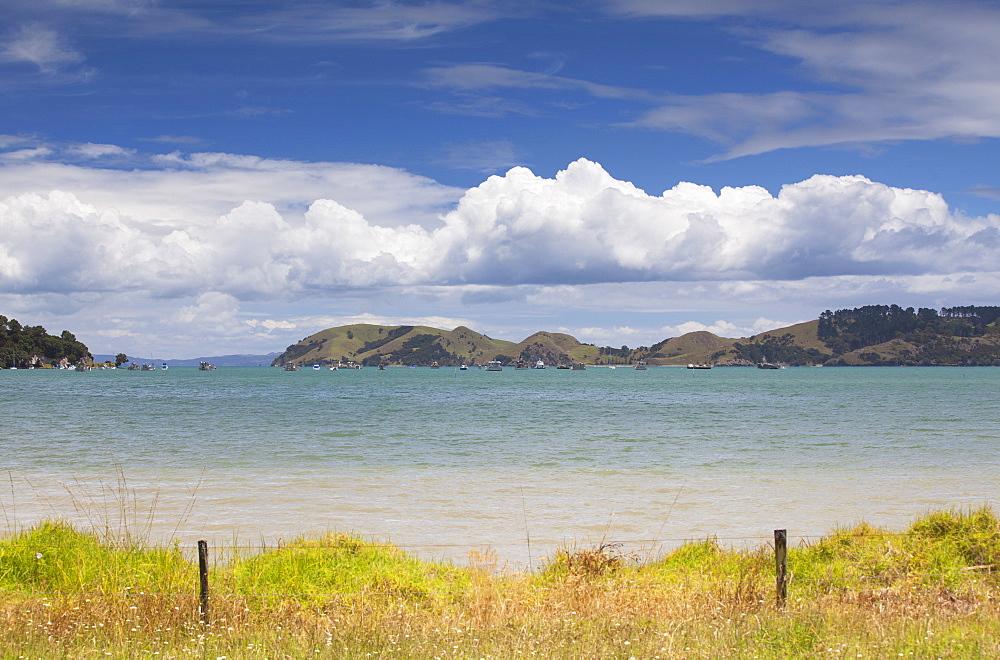 Harbour of Coromandel Town, Coromandel Peninsula, Waikato, North Island, New Zealand, Pacific