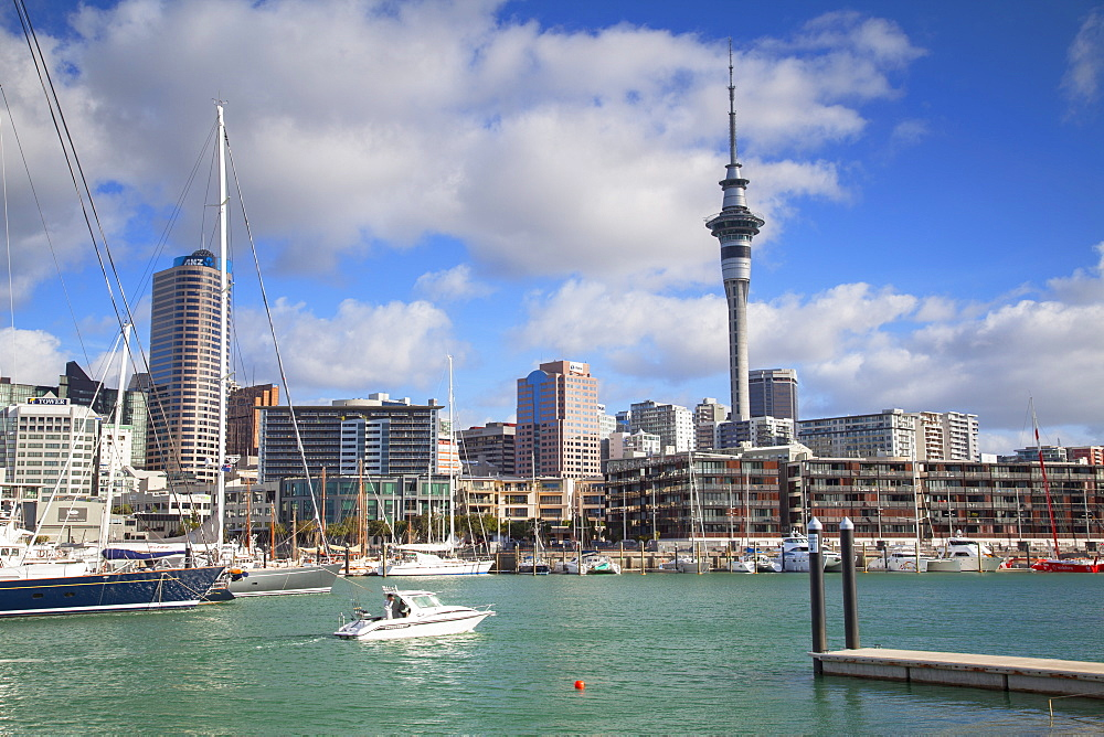 Viaduct Harbour and Sky Tower, Auckland, North Island, New Zealand, Pacific