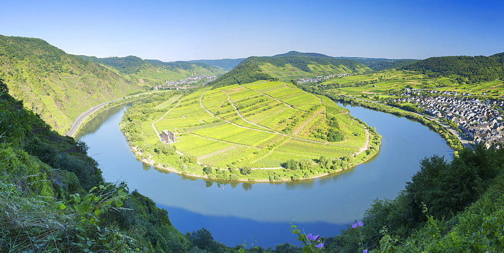 View of River Moselle, Bremm, Rhineland-Palatinate, Germany, Europe