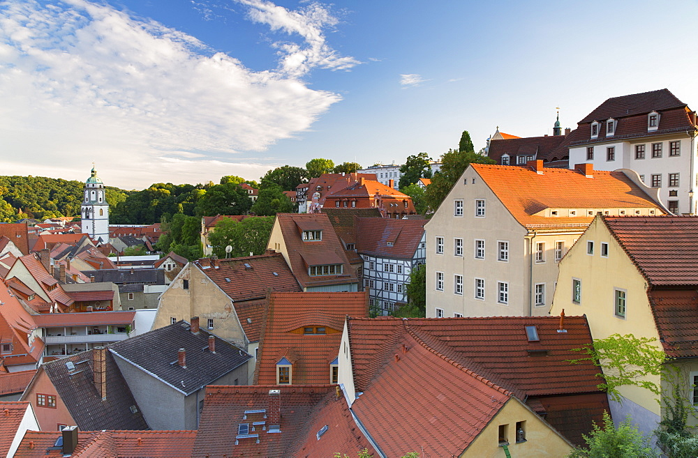 View of Meissen, Saxony, Germany, Europe