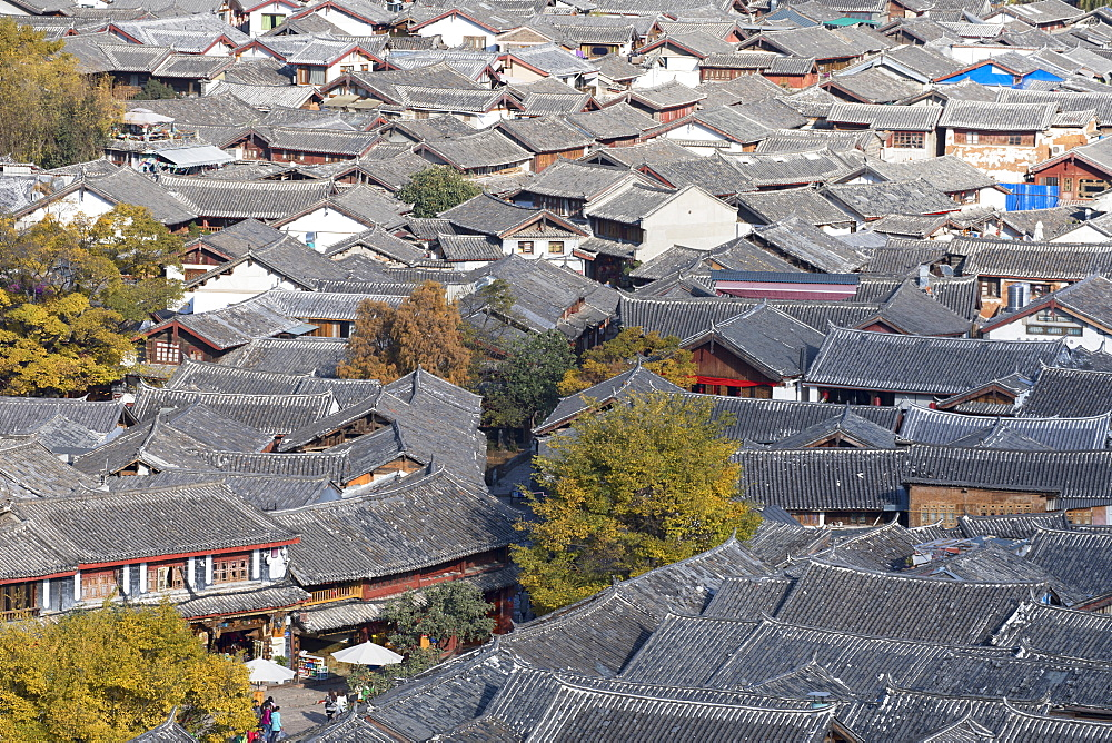 View of Lijiang, UNESCO World Heritage Site, Yunnan, China, Asia - 800-2965
