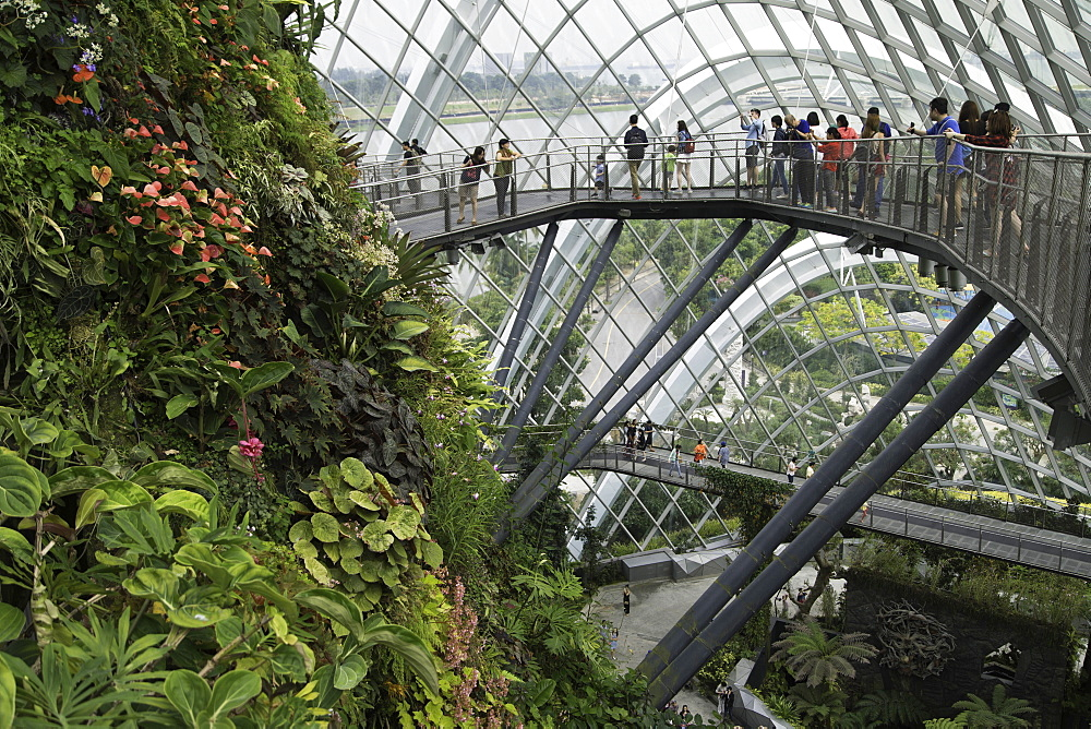 Cloud Forest greenhouse in Gardens by the Bay, Singapore, Southeast Asia, Asia