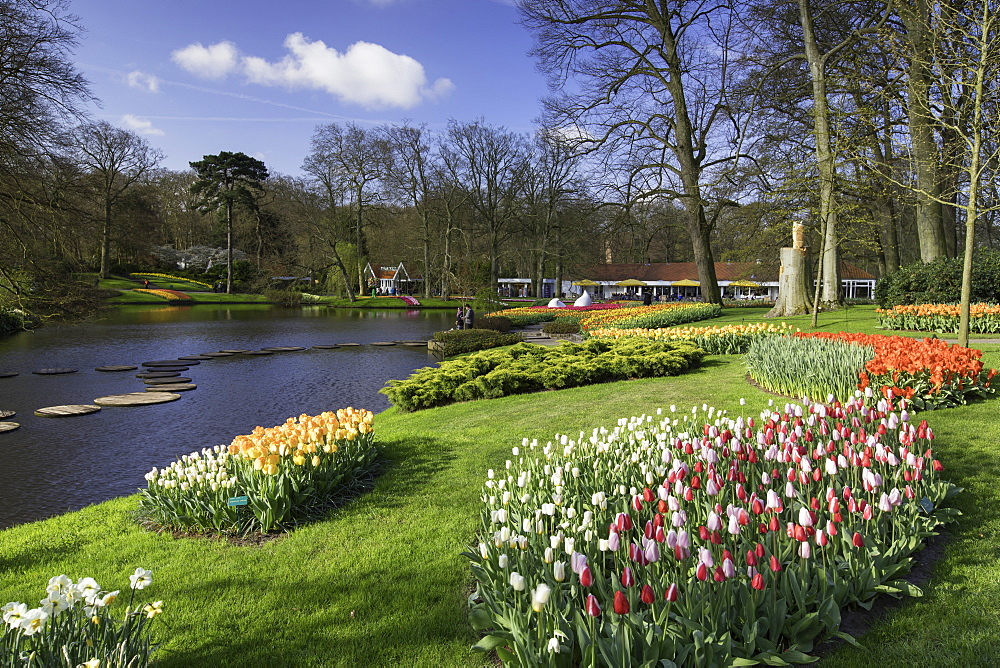 Tulips in Keukenhof Gardens, Lisse, Netherlands, Europe