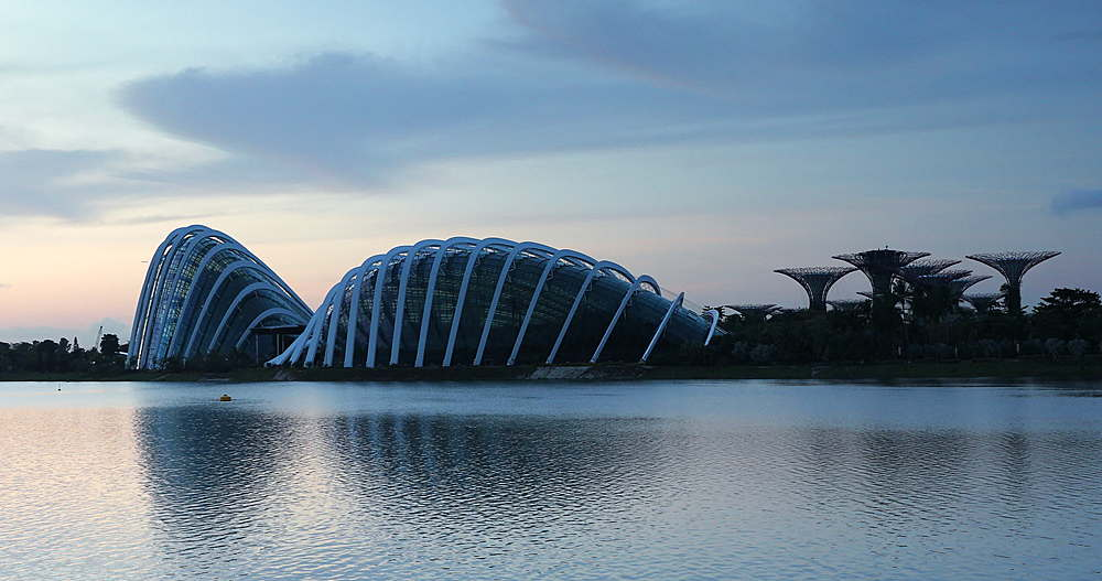Gardens by the Bay at dawn, Singapore, Southeast Asia, Asia - 800-3061