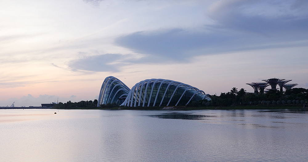 Gardens by the Bay at dawn, Singapore, Southeast Asia, Asia - 800-3062