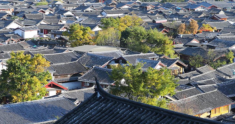 View of rooftops of Lijiang, Yunnan, China, Asia