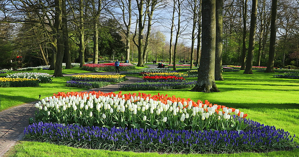 Tourists at Keukenhof Gardens, Lisse, Netherlands - 800-3151