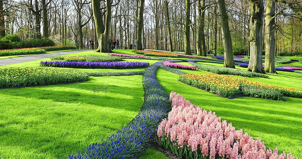 Tourists at Keukenhof Gardens, Lisse, Netherlands - 800-3155