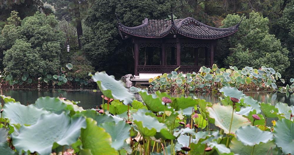 Quyuan Garden on West Lake, Hangzhou, Zhejiang, China - 800-3239