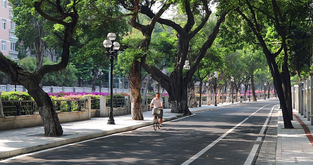 People cycling along road in Dongshan area, Guangzhou, Guangdong, China - 800-3242
