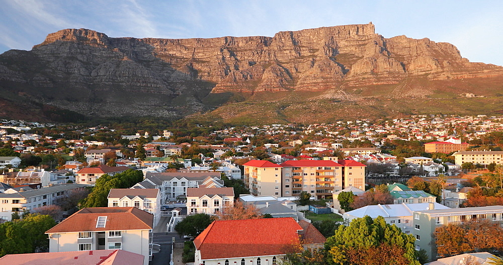 Table Mountain and City Bowl, Cape Town, Western Cape, South Africa, Africa - 800-3293