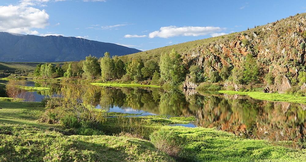 Bontebok National Park, Swellendam, Western Cape, South Africa - 800-3309