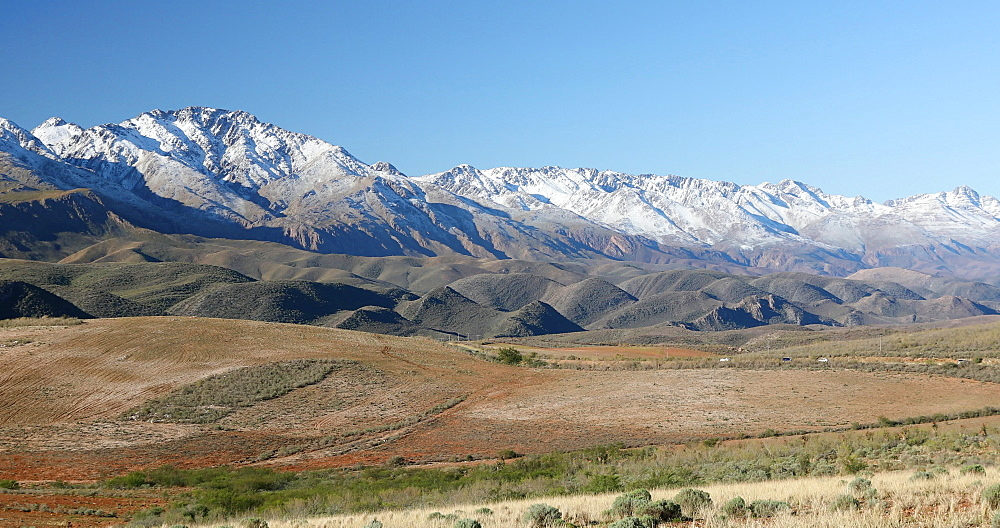 Swartberg Mountains, Oudtshoorn, Western Cape, South Africa, Africa - 800-3320