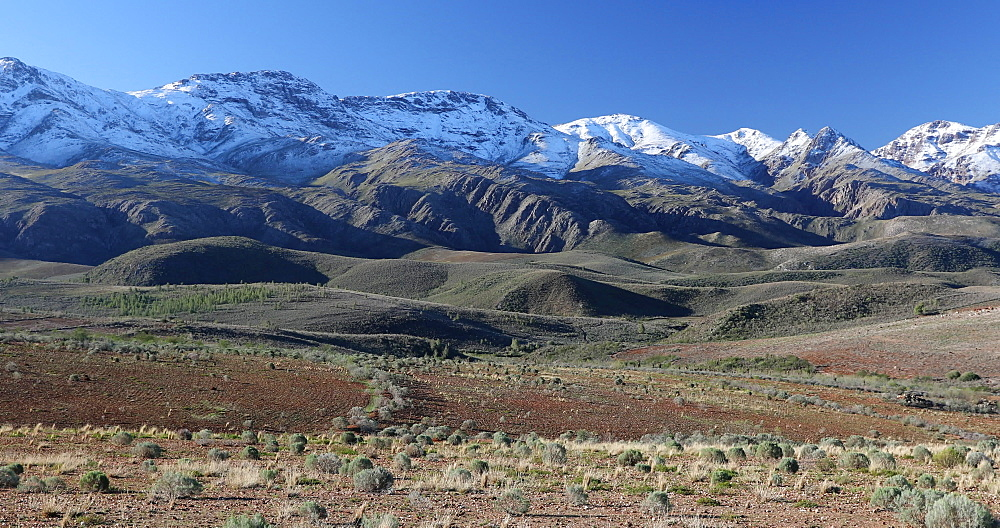 Swartberg Mountains, Oudtshoorn, Western Cape, South Africa, Africa - 800-3321
