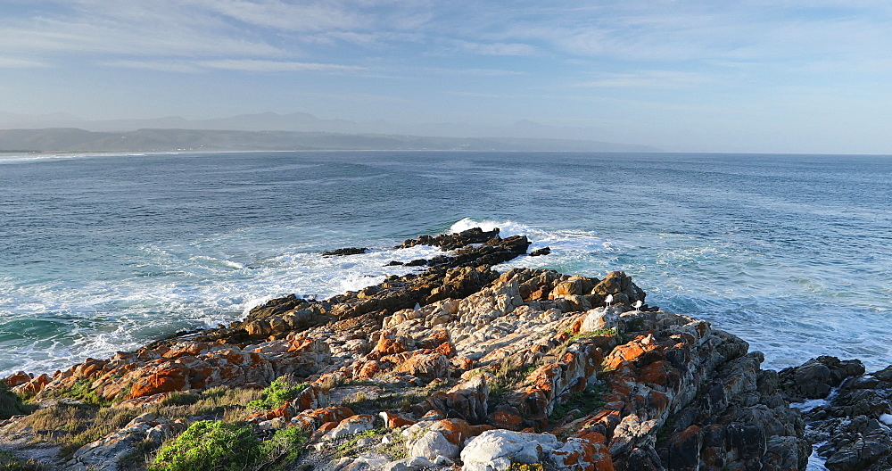 Lookout Beach, Plettenberg Bay, Western Cape, South Africa, Africa - 800-3339