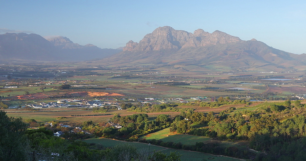 View of Paarl Valley, Western Cape, South Africa, Africa - 800-3348