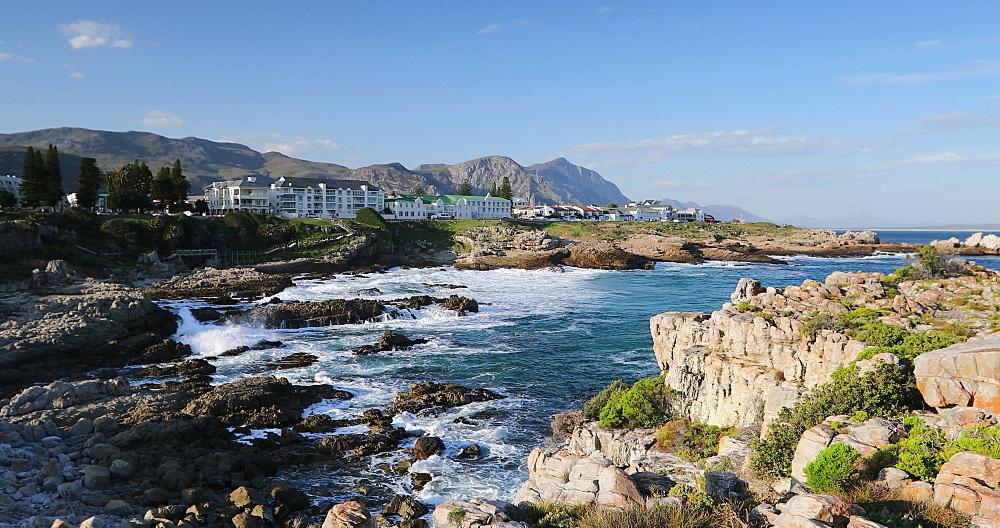 Hermanus, Western Cape, South Africa, Africa - 800-3356