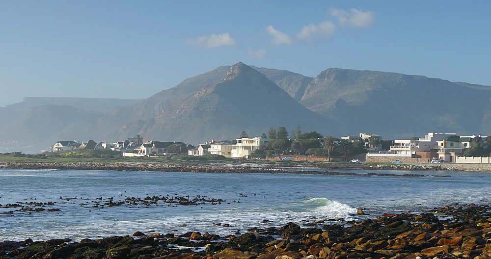 Kommetjie beach, Cape Town, Western Cape, South Africa - 800-3375