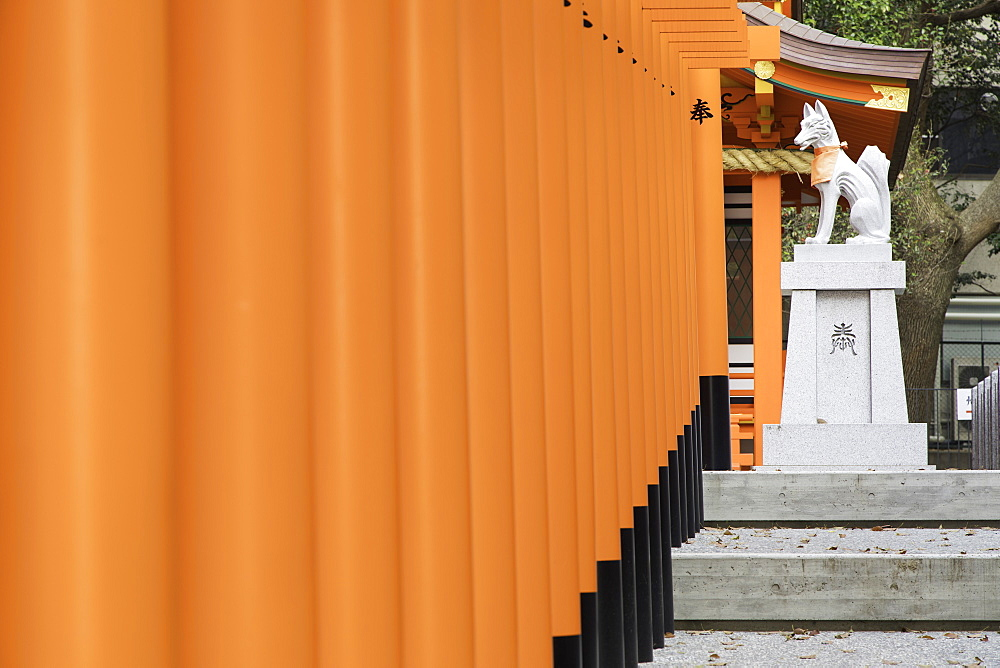 Torii gates at Ichinomiya shrine, Kobe, Kansai, Japan, Asia