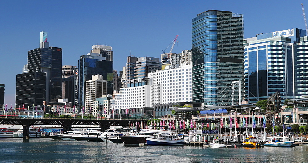 Darling Harbour, Sydney, New South Wales, Australia, Pacific - 800-3464