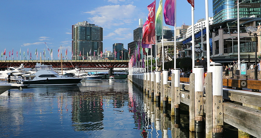 Darling Harbour, Sydney, New South Wales, Australia, Pacific - 800-3467