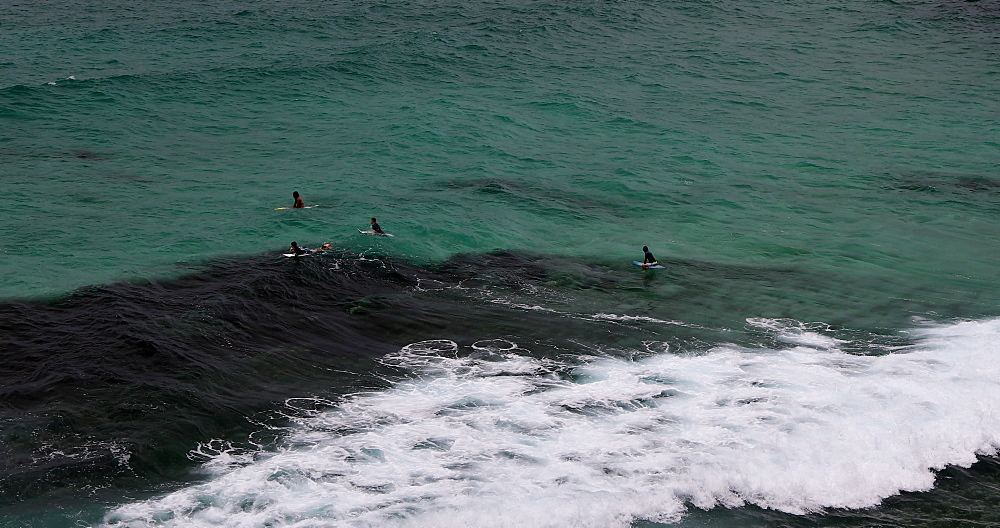 Surfers at Tamarama Beach, Sydney, New South Wales, Australia, Pacific