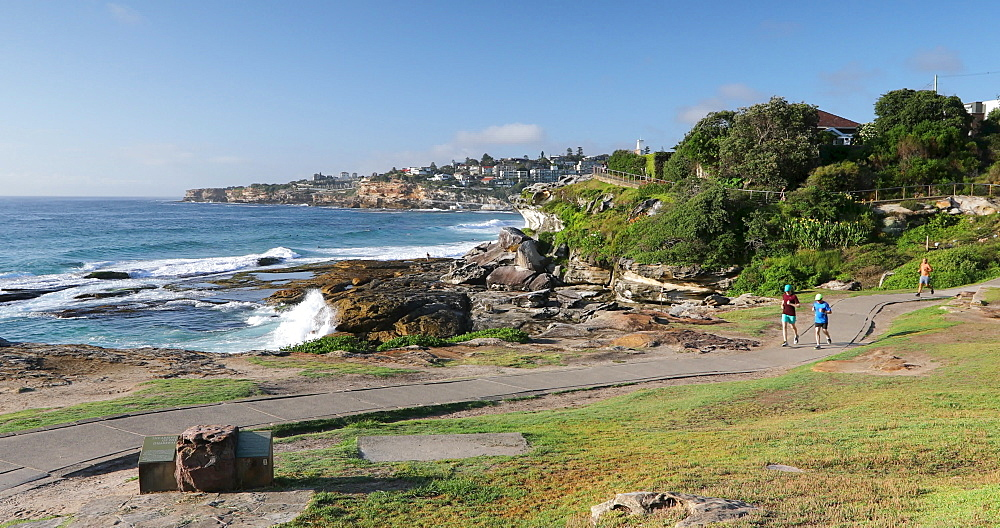 Bondi to Bronte coastal walk, Sydney, New South Wales, Australia, Pacific - 800-3494
