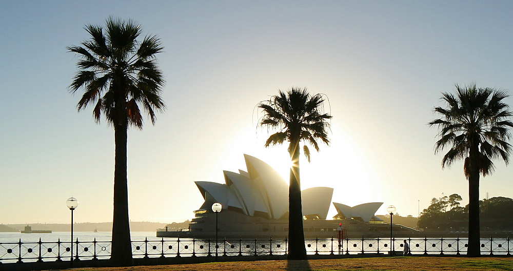 Sydney Opera House at sunrise, UNESCO World Heritage Site, Sydney, New South Wales, Australia, Pacific - 800-3523