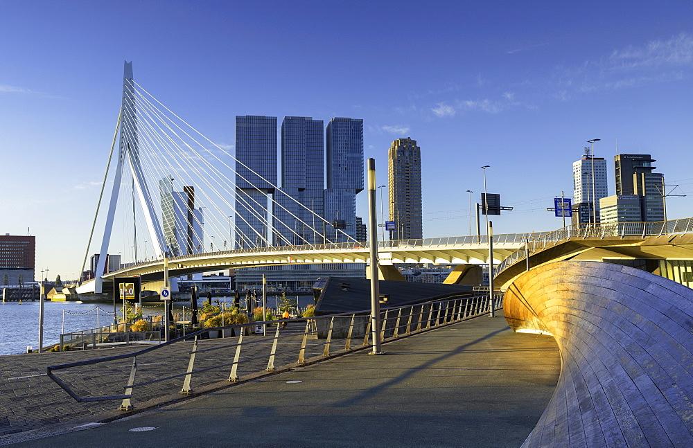 Erasmus Bridge (Erasmusbrug), Rotterdam, Zuid Holland, Netherlands, Europe - 800-3549