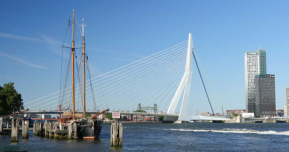 Erasmus Bridge, Rotterdam, Netherlands - 800-3648