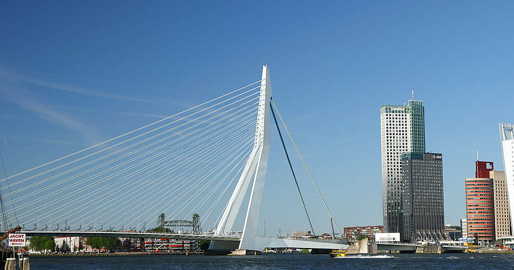 Erasmus Bridge and skyline, Rotterdam, Netherlands - 800-3649