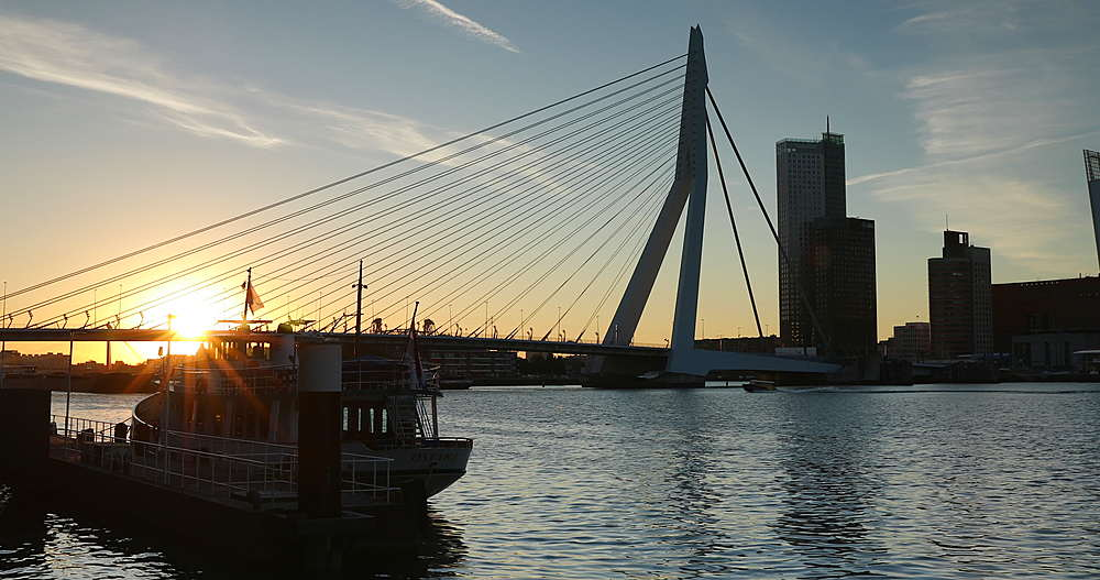Erasmus Bridge at sunrise, Rotterdam, Netherlands - 800-3652