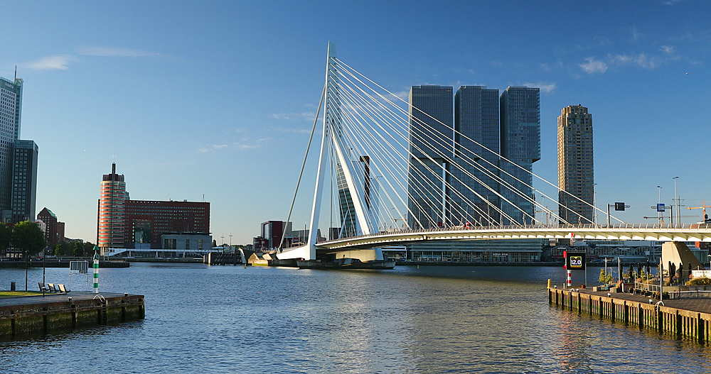 Erasmus Bridge and skyline, Rotterdam, Netherlands - 800-3653